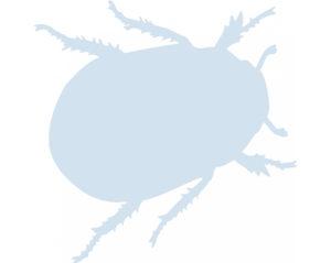 Pest and beg bug offshore platform control